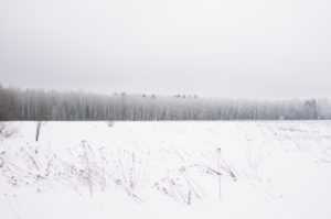 Cold Environment